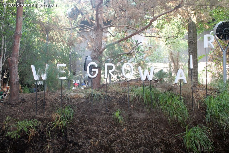"""Insegna """"We grow air"""""""