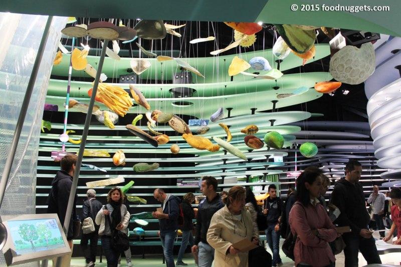 Area della biodiversità nel padiglione tedesco in Expo