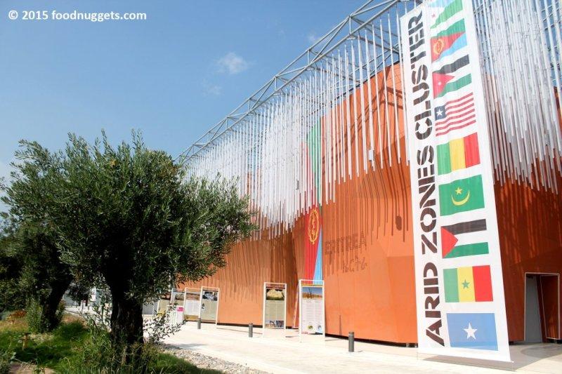 La facciata del Cluster delle zone aride in Expo