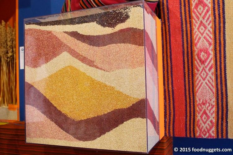 Varietà di quinoa esposte nel padiglione della Bolivia in Expo Milano 2015
