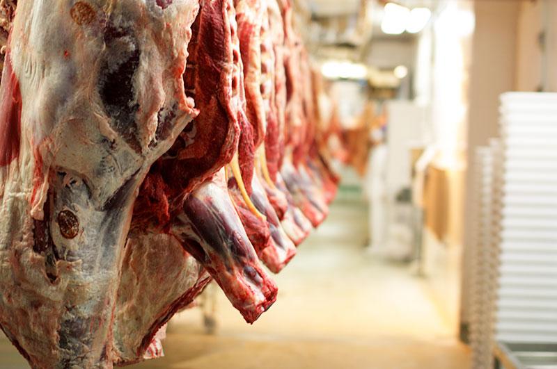 Tagli di carne macellata appesi